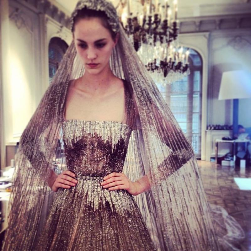 Dark gray sparkly wedding gown by Elie Saab