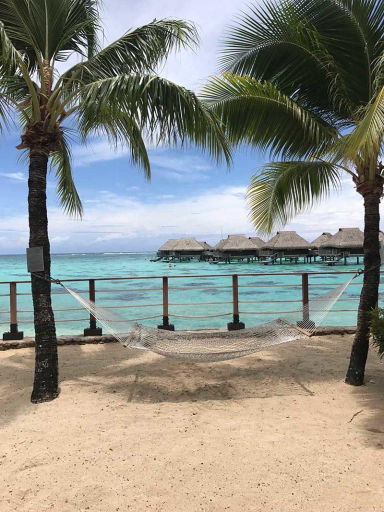 Travel designer photo of on beach tropical island
