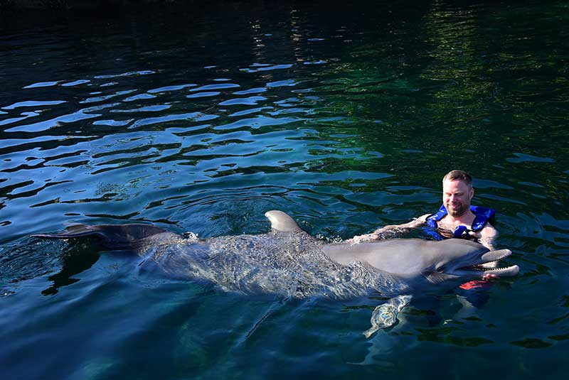 Swimming with dolphins at Delphinus in Mexico