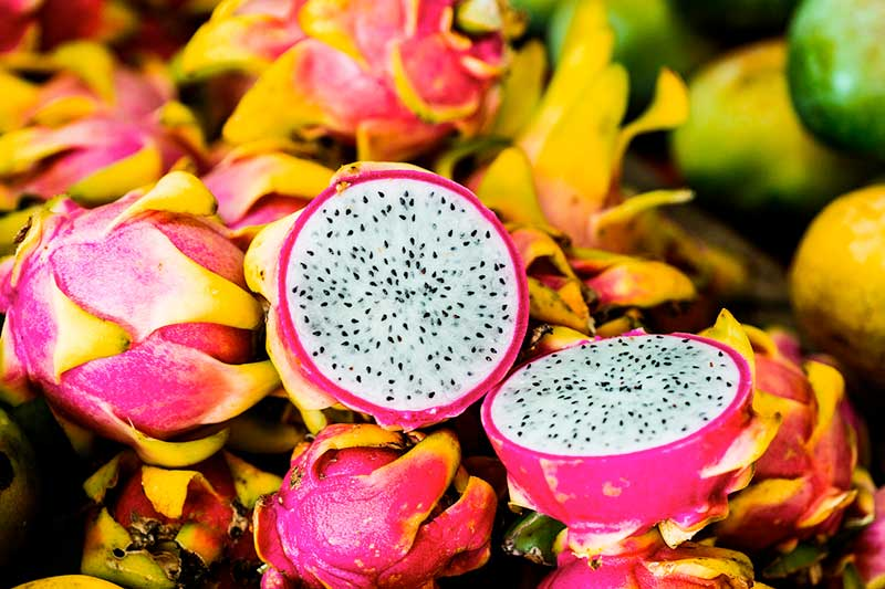 Fresh dragon fruit at mercado in the State of Yucatan