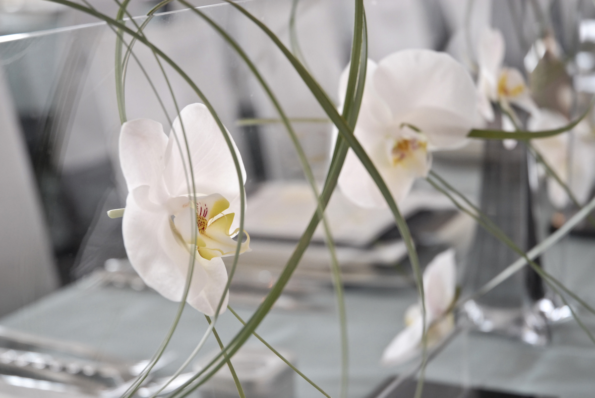 Orchids in wedding decor