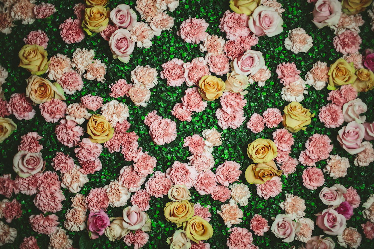 Wedding flower wall with white, yellow, and pink roses